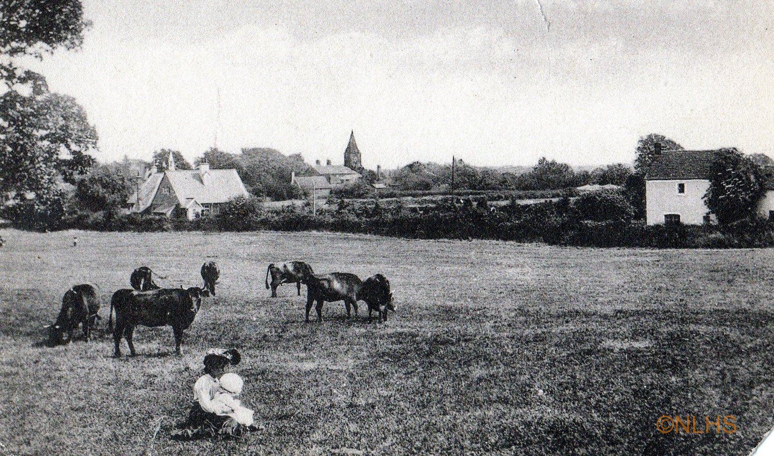 4-Buckhurst Meadow